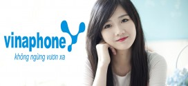 Vinaphone Doanh nghiep