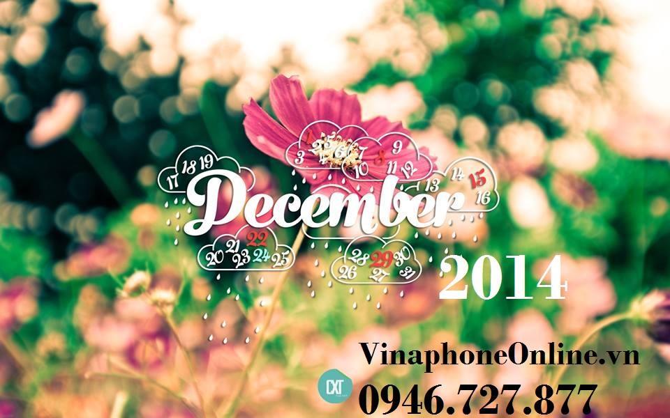 VinaphoneOnline.vn 12/2014